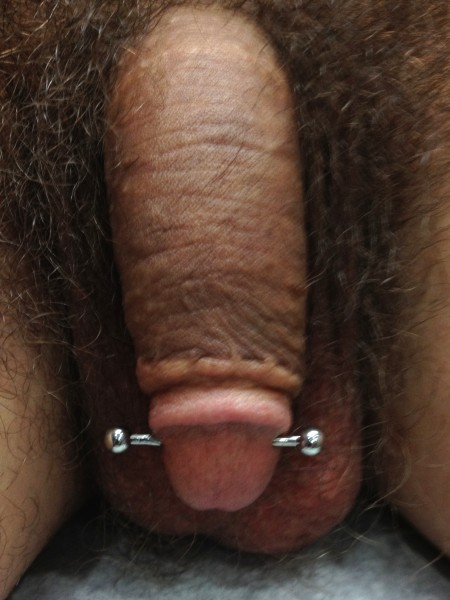 Ampallang (male genital) piercing photo
