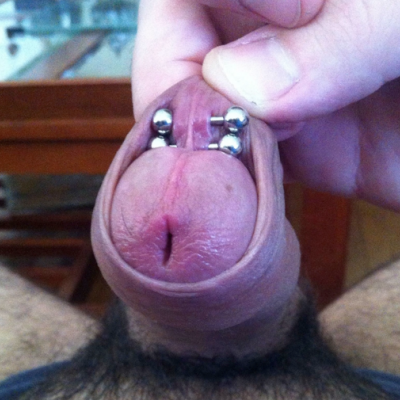 Two frenum piercings on an intact build (uncircumcised) resting within the foreskin