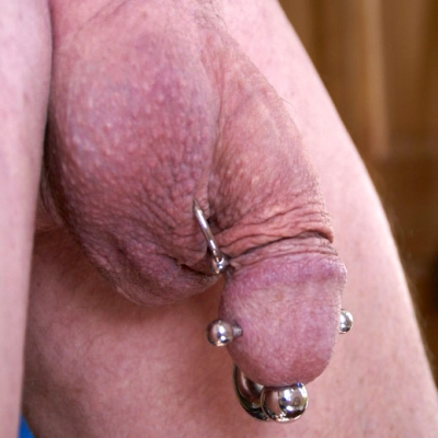 Ampallang and other piercings (Prince Albert and scrotum)