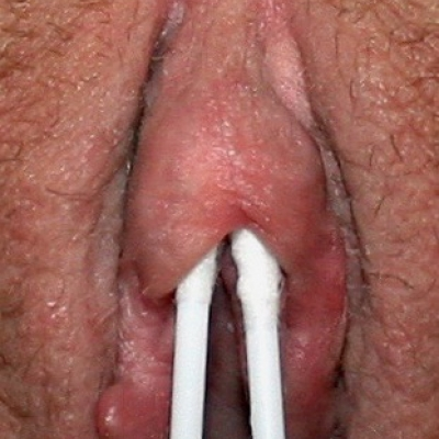 Double q-tip test for Princess Diana piercings--if two swabs fit under the hood, so will two pieces of jewelry