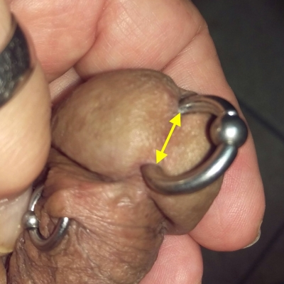 "There should be AT LEAST 1/2"" (12mm) of tissue between the piercing and the lower edge of the urethra when flaccid"